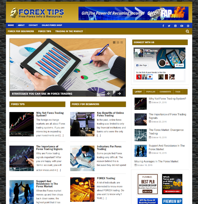 Forex PLR Blog