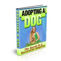 adoptingdog200