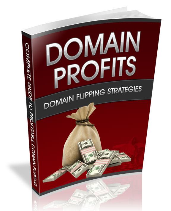 domain profits