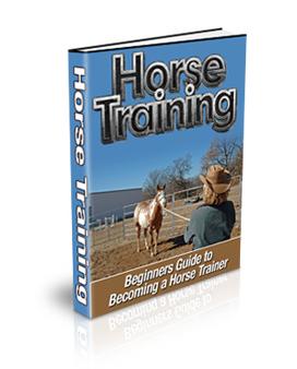 horsetrain