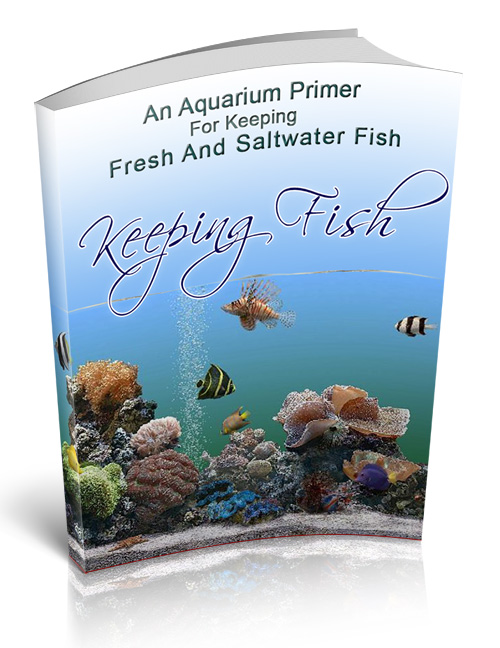 keepingfish