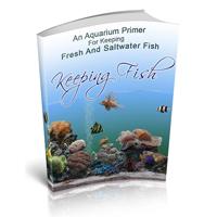 keepingfish200