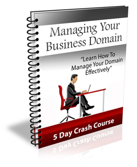 manage your business domain