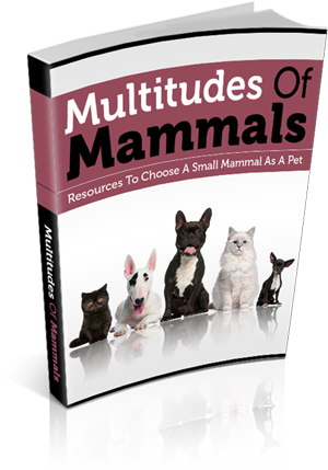 multitudemammals