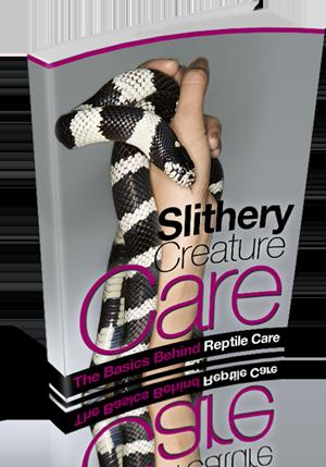 slitherycare