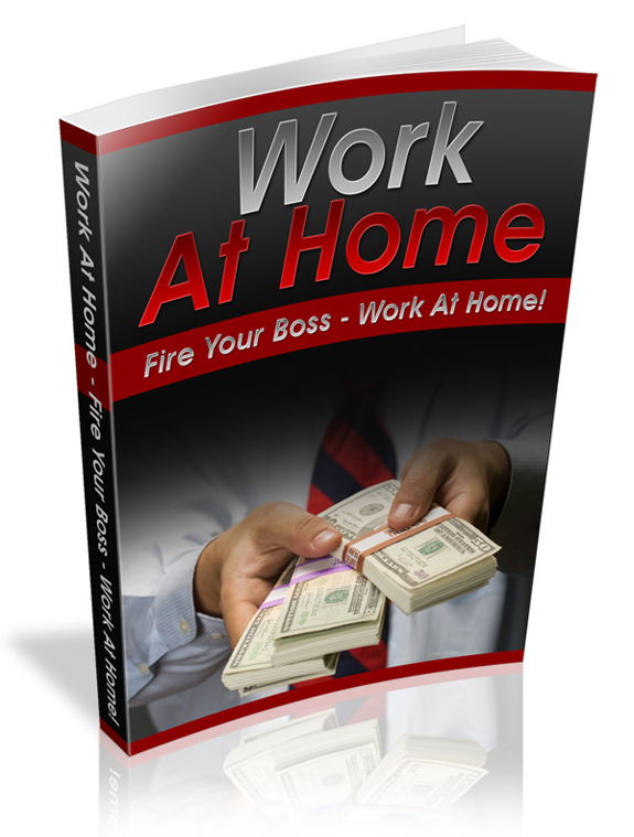 work from home plr ebook