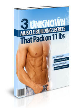 3unknownmuscleb