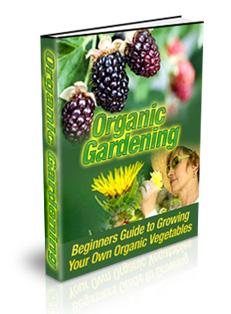 organicgarde
