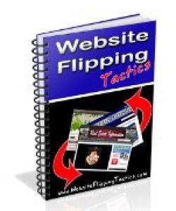 websiteflipping