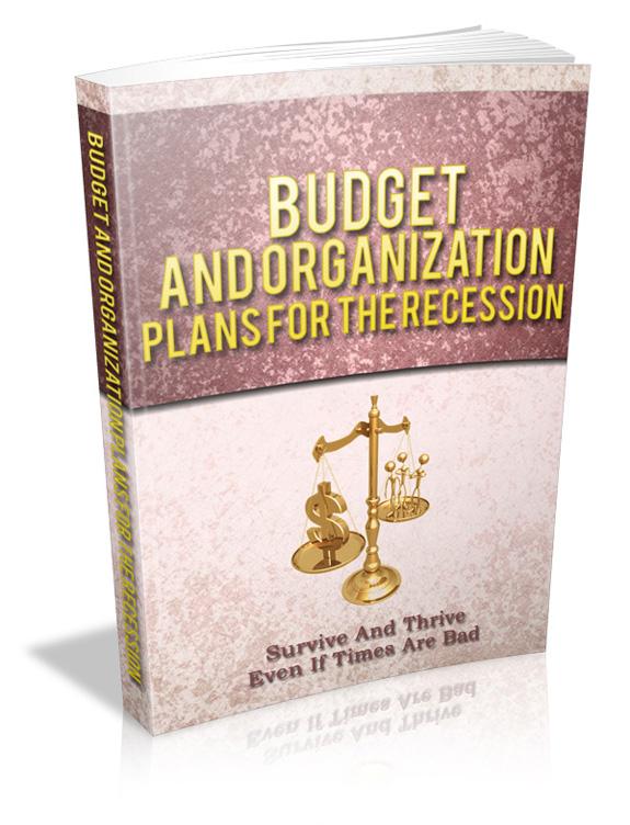 budgetorganiza