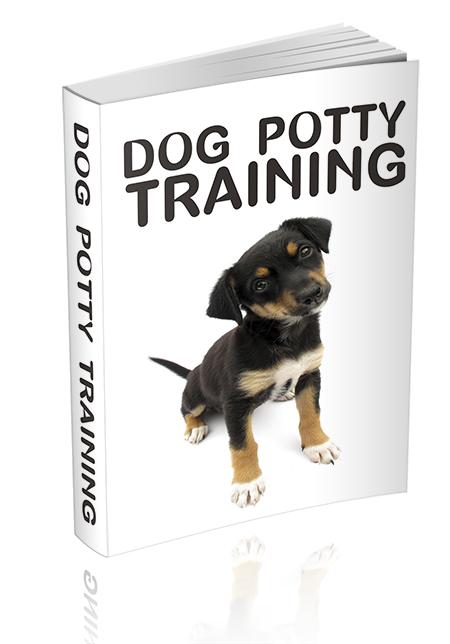 dogpottytra