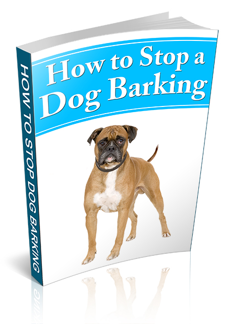howstopdogb