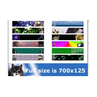 Success Graphics Web Design Package