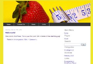 5websitevol1