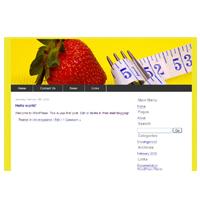 5 Website Themes Vol1