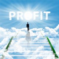 Building a Profitable Internet Business