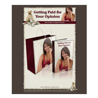 Getting Paid For Your Opinion Minisite Graphics