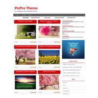 Picpro Wordpress Theme