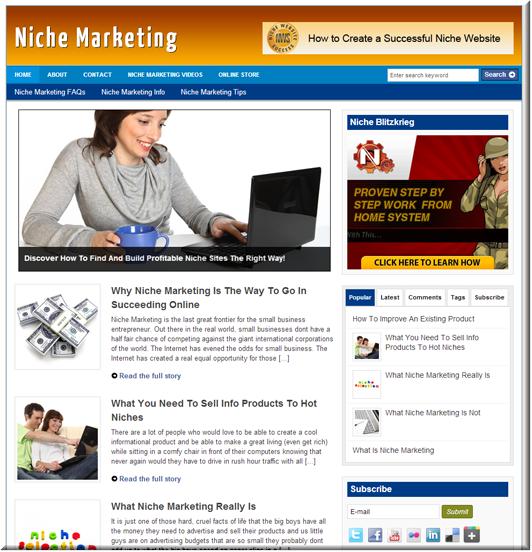 Niche Marketing PLR Site