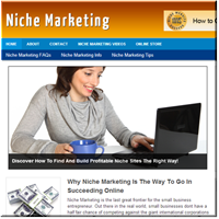 Niche Marketing PLR Site