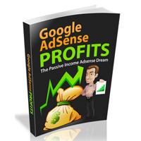 Google Adsense Profits II