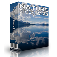 Nature Stock Photos