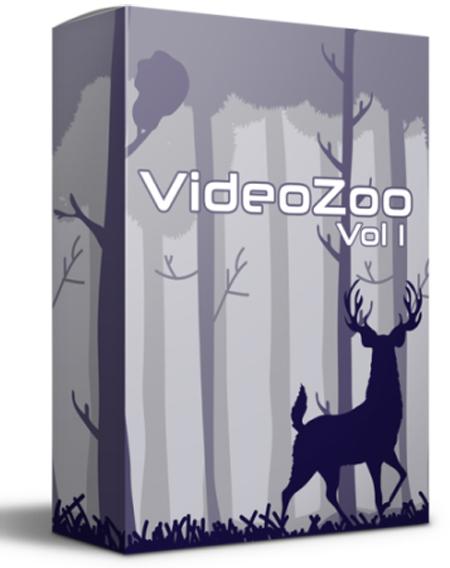 VideoZoo Vol. 1