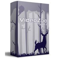 videozvol2001