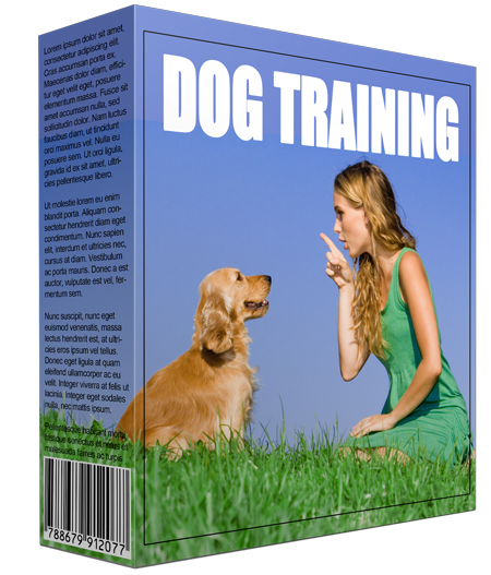 Dog Training Information Software