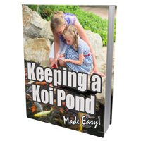 Keeping a Koi Pond