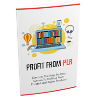 Profit From PLR