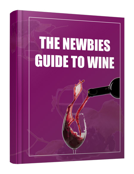 The Newbie Guide to Wine