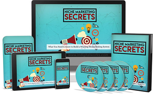 Niche Marketing Secrets Video