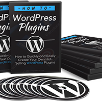 How to WP Plugin Outsourcing