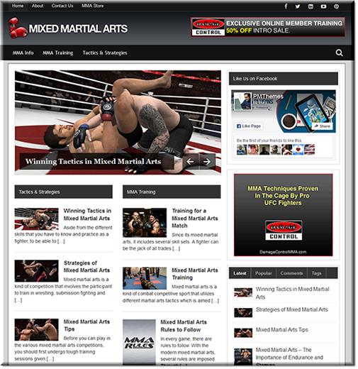 Mixed martials arts plr blog